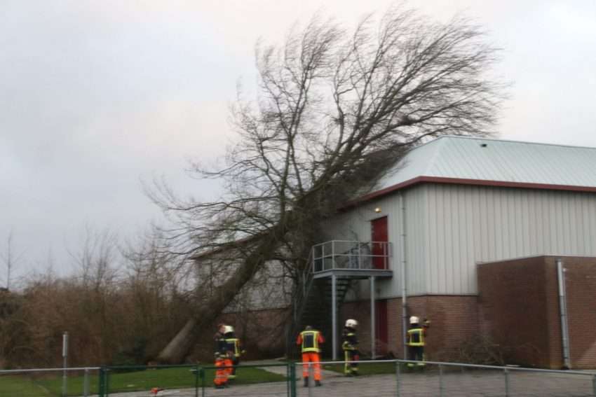Stormschade Parkzoomhal