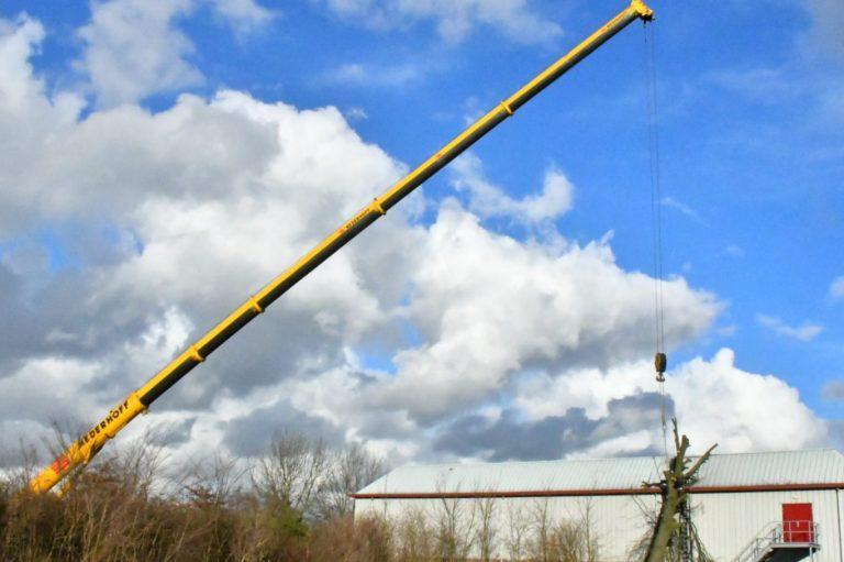 Enorme kraan verlost sporthal van omgewaaide boom (video)