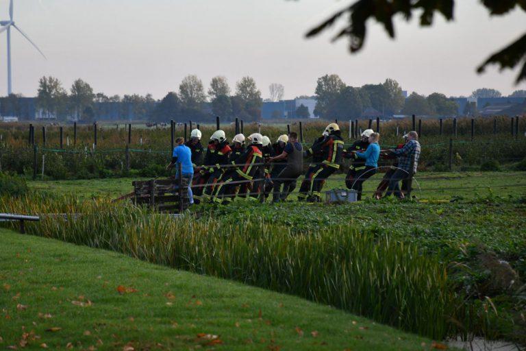 Brandweer redt paard uit water langs Knibbelweg in Zevenhuizen