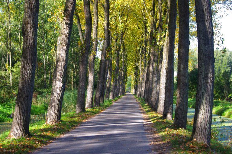 Herfst in Hitland