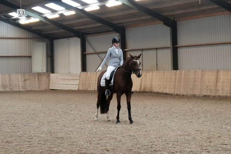 Sanne Bregman (Zuidplasruiters) onoverwinnelijk met haar stoere Friese paard