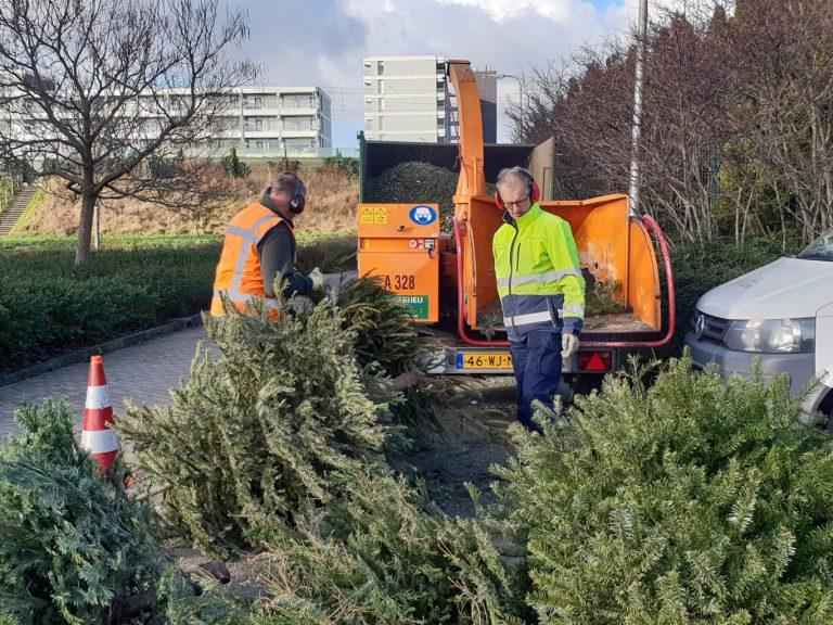 Meer inleverpunten en schriftelijke vragen over kerstbomen inzameling