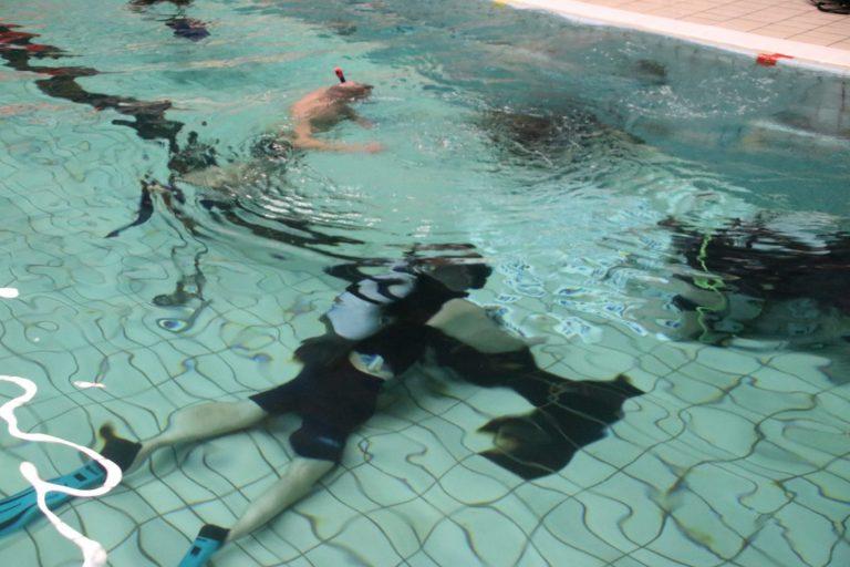 Feest voor jarige onderwatersport vereniging Potvis
