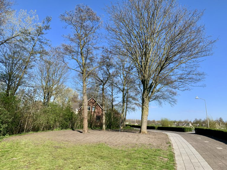 Oude locatie oorlogsmonument wordt grasveld?