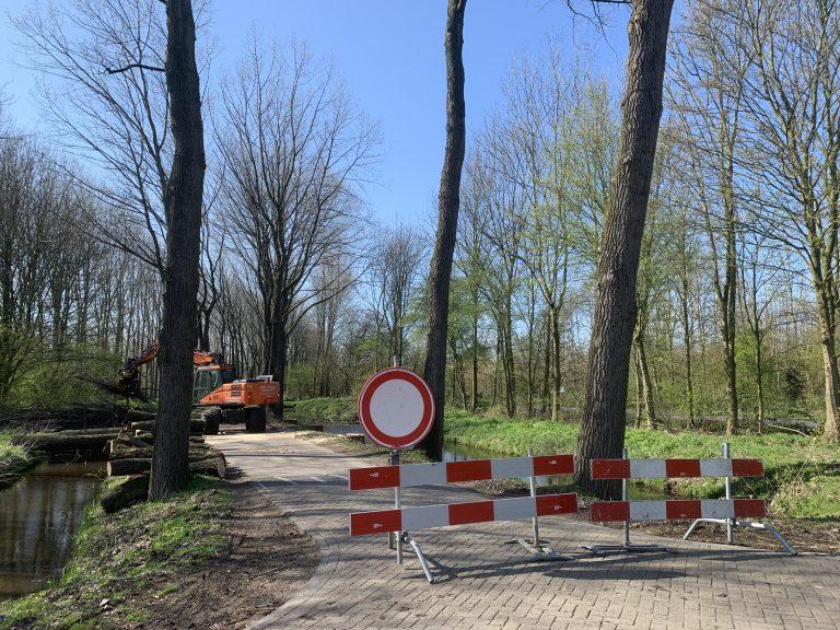 Kap bomen Hitlandselaan begonnen