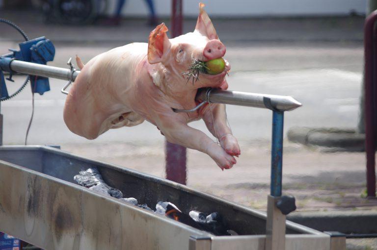 Varken aan het spit tijdens Foodtruck Festival Toost In Nieuwerkerk a/d IJssel