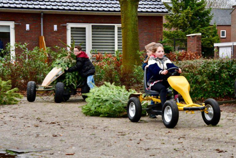 Jong en Oud jaagt op kerstbomen in Zuidplas voor geld
