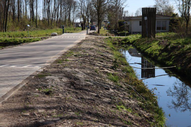 Net geplante wilgen gesloopt langs Hitlandselaan