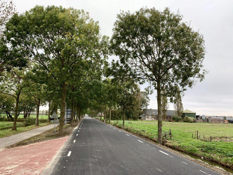 Structuurbomen langs Middelweg