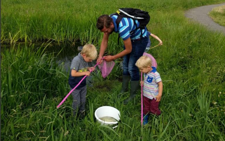 PvdA stelt vragen over slechte kwaliteit kleine wateren in Waterschap