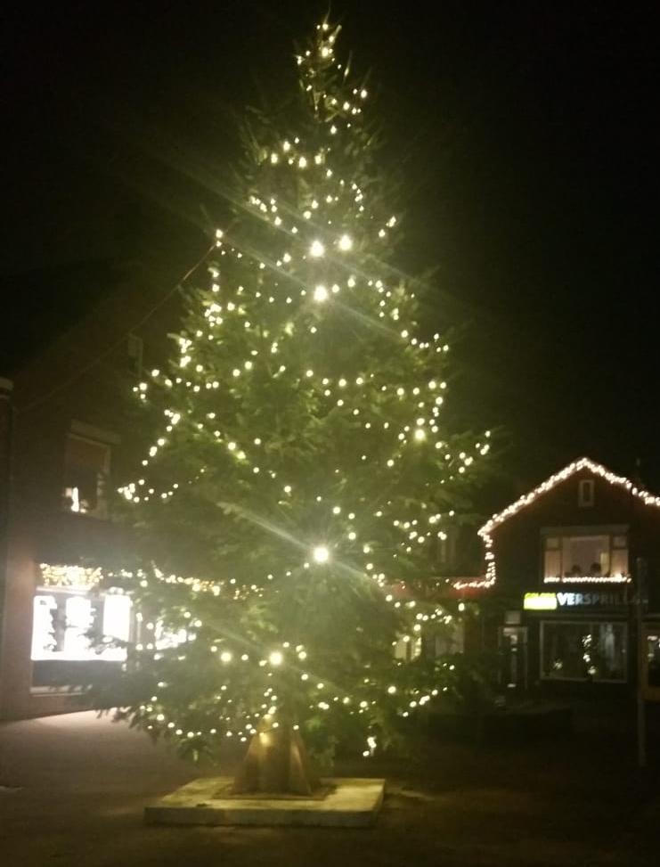 Punt en van Dorp schenken Zevenhuizen een verlichte kerstboom