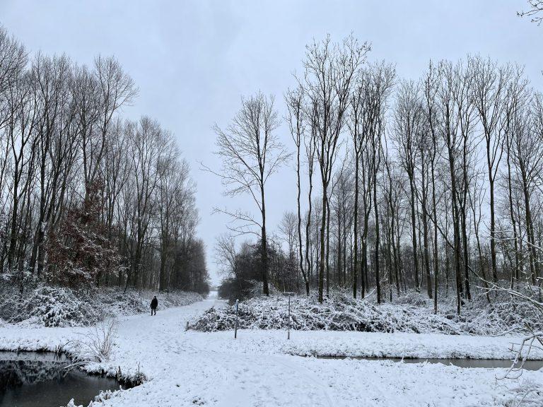 Sneeuw in Park Hitland