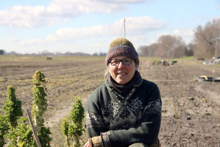 Boer & Buurt Zevenhuizen biedt eigen oogst aan inwoners Zuidplas en omgeving (+video)